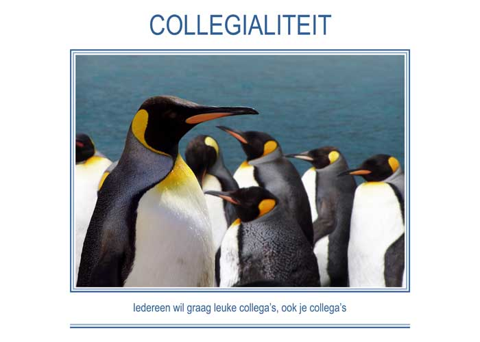 Re-minders COLLEGIALITEIT
