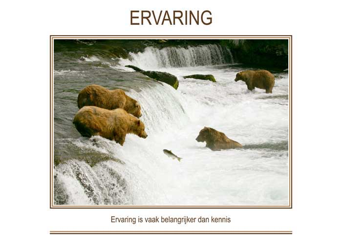 Re-minders ERVARING (2)