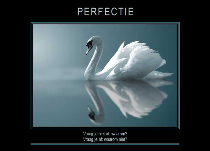 Re-minders PERFECTIE