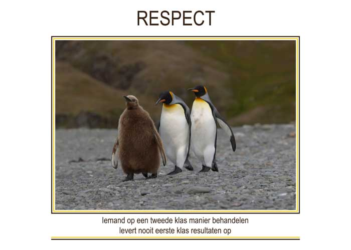 Re-minders RESPECT