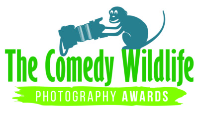 Comedy Wildlife