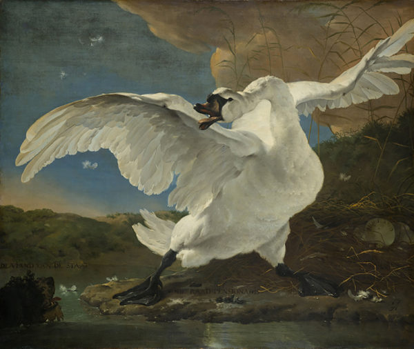 Jan Asselijn The Threatened Swan