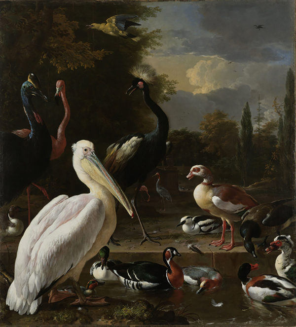 Melchior d' Hondecoeter A Pelican and other Birds near a Pool