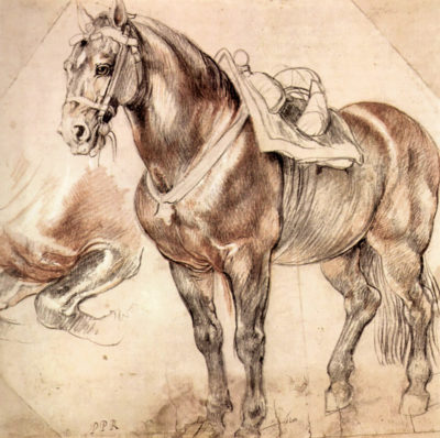 Peter Paul Rubens Horse studies