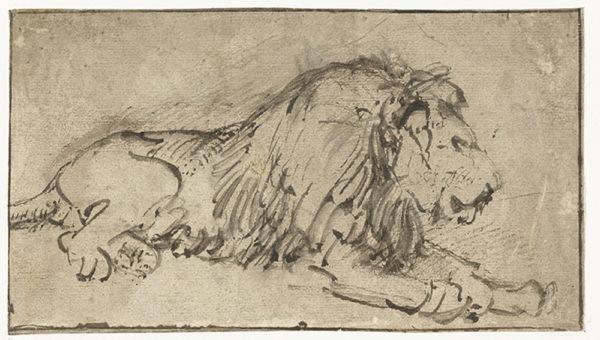 Rembrandt Harmensz. van Rijn Recumbent Lion Facing Right