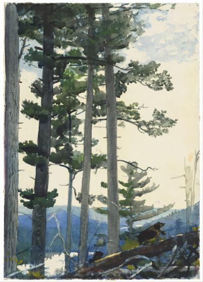 Winslow Homer Old Settlers
