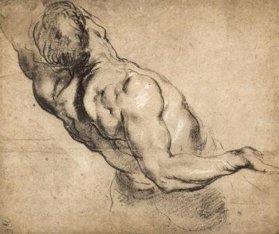 Peter Paul Rubens Study of man's torso