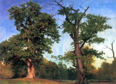 Albert Bierstadt The pioneers of forests