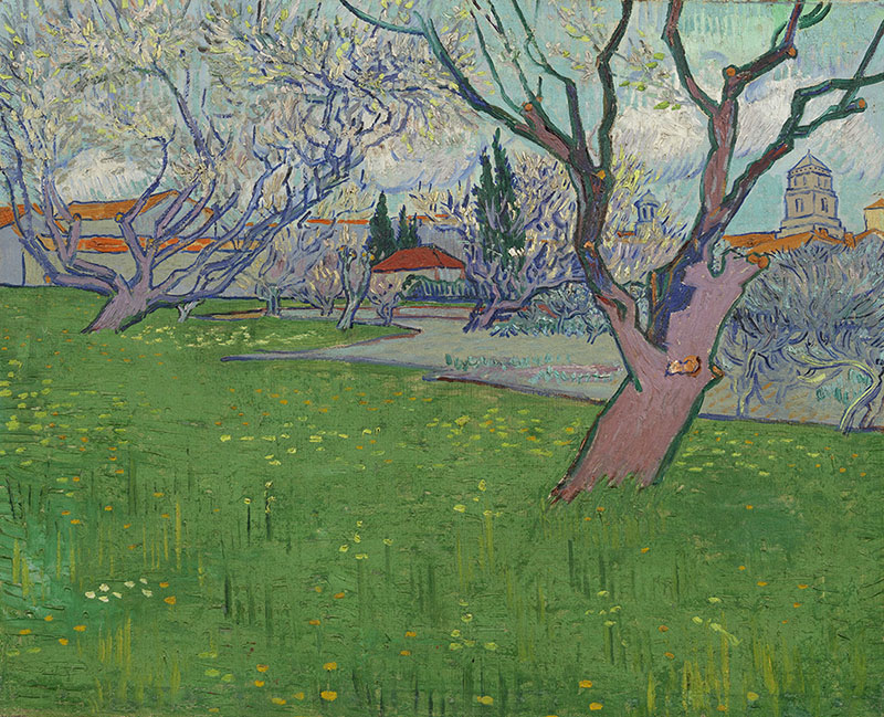 Vincent van Gogh Orchards in Blossom