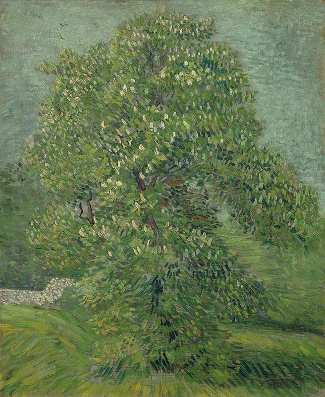 Vincent van Gogh Horse Chestnut Tree in Blossom