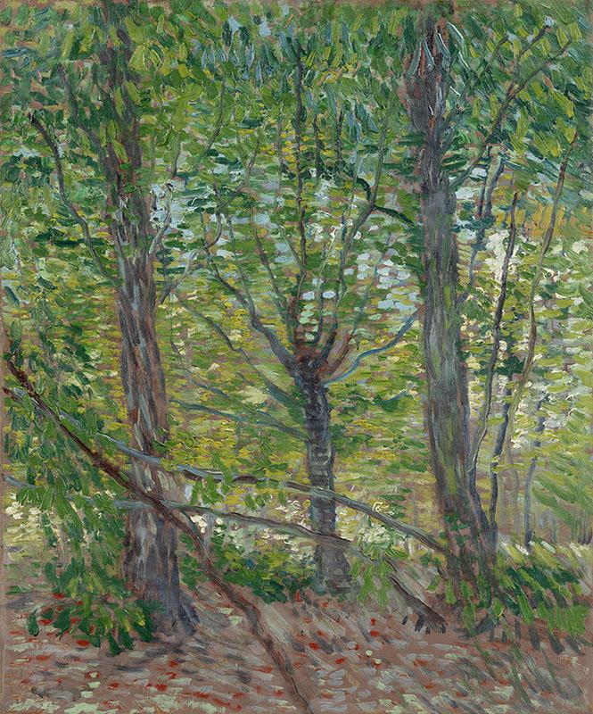 Vincent van Gogh Trees