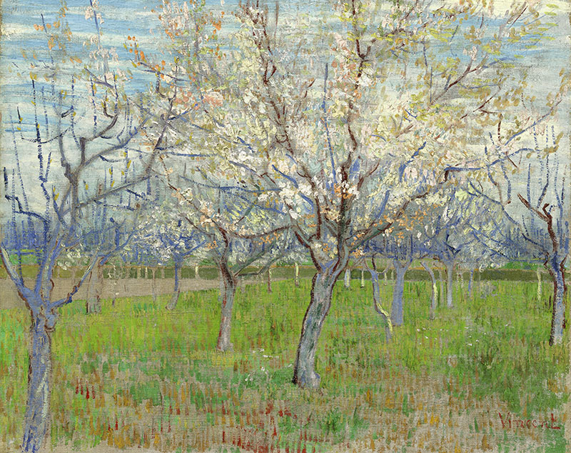 Vincent van Gogh The Pink Orchard