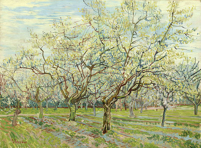Vincent van Gogh The White Orchard