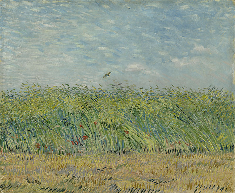 Vincent van Gogh Wheatfield with Partridge