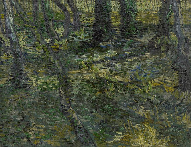 Vincent van Gogh Undergrowth (3)