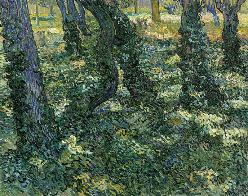 Vincent van Gogh Undergrowth