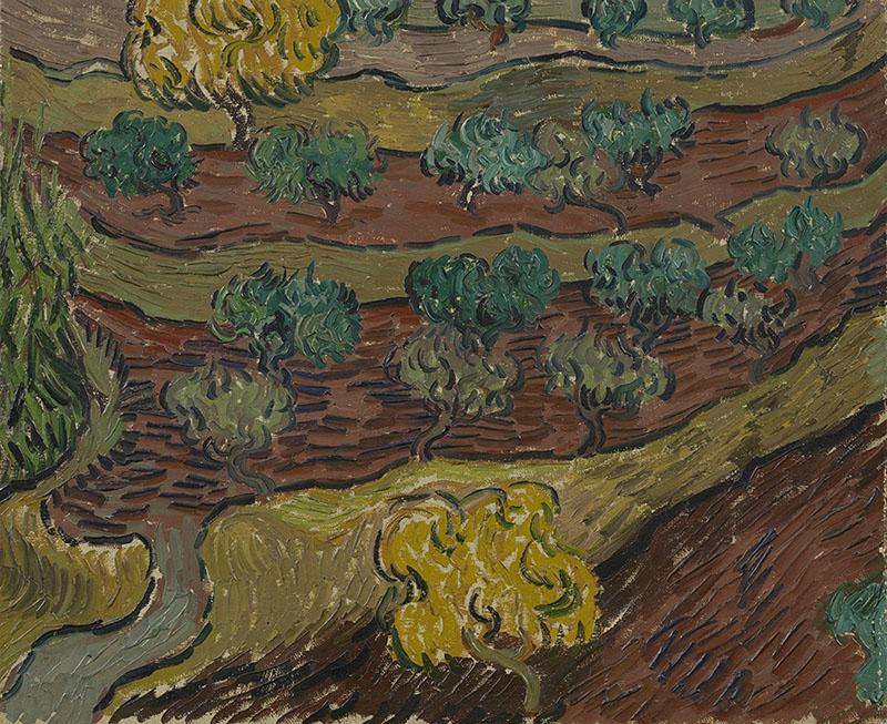Vincent van Gogh Olive Trees on a Hillside