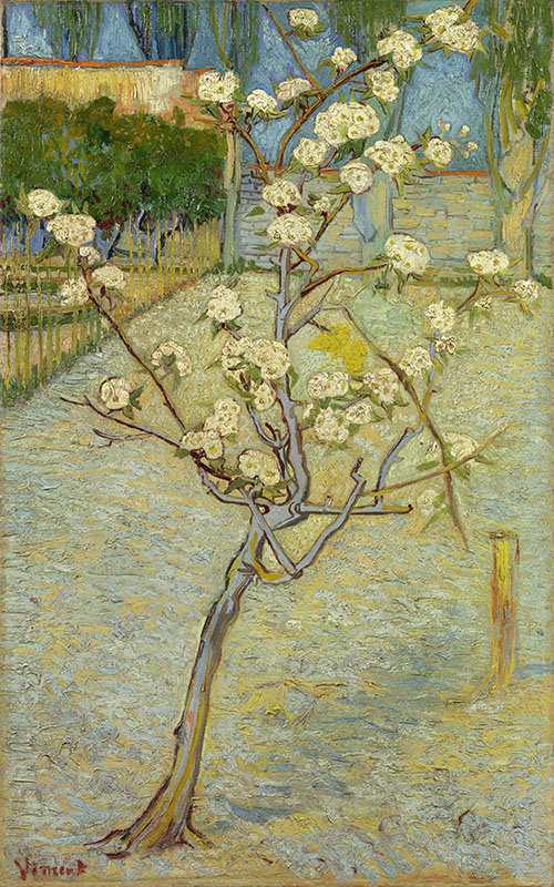 Vincent van Gogh Small Pear Tree in Blossom