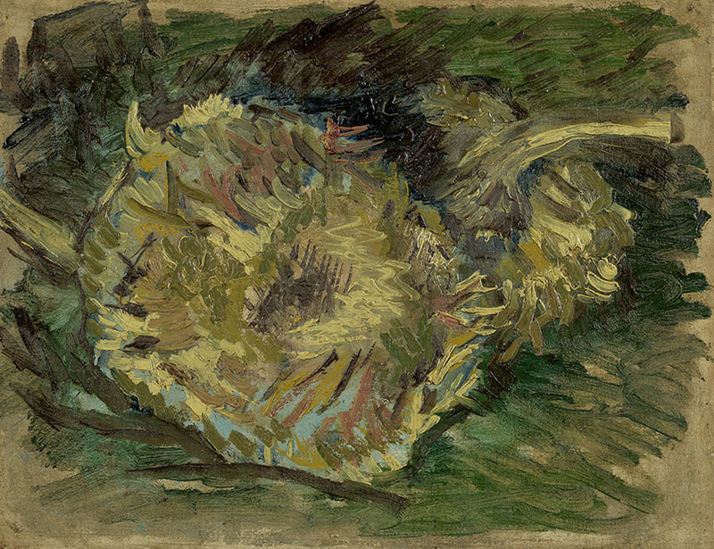 Vincent van Gogh Sunflowers Gone to Seed