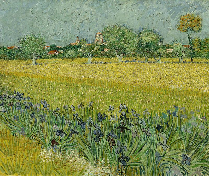 Vincent van Gogh Field with Irises near Arles