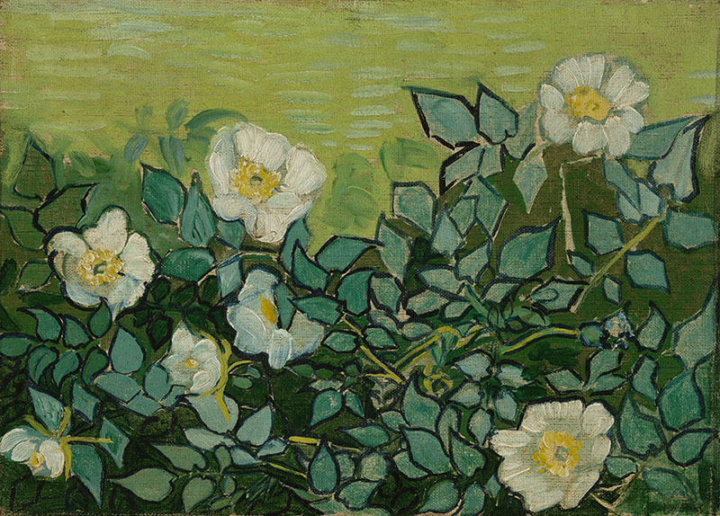 Vincent van Gogh Wild Roses
