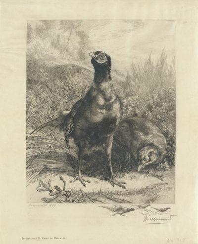 Félix Bracquemond Partridges (Les perdrix)