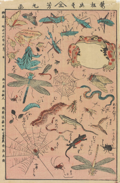 Utagawa Yoshimaru New Print of Insects and Small Creatures
